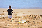 A young boy plays in the sand on the beach.Park.