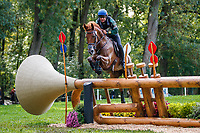 ESP-Eduardo Via-Dufresne rides Maribera Pomes 15.6 during the Cross Country for the CCI2*-L6YO. 2019 FRA-Mondial du Lion - FEI World Breeding Championships. Le Lion d'Angers. France. Saturday 19 October. Copyright Photo: Libby Law Photography