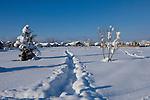 Idaho, Coeur d' Alene. Tracks through Shadduck Park on a sunny winter day with  deep snow.