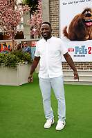 """LOS ANGELES - JUN 2:  Hannibal Buress at the """"The Secret Life of Pets 2"""" Premiere at the Village Theater on June 2, 2019 in Westwood, CA"""