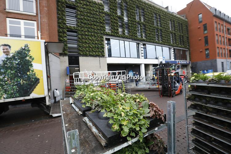 Foto: VidiPhoto<br /> <br /> BREDA - De voorgevel van parkeergarage de Barones aan de Nieuweweg in Breda is vanaf vrijdag groen. Medewerkers van Mobilane uit Leersum bevestigden donderdagmiddag de laatste plantcassettes aan de gevel van ongeveer 250 vierkante meter groot. Het gaat daarbij om ruim 10.000 planten met onder meer verschillende soorten varens, geraniums, Campanula en Bergenia. Via een innovatief capillair watergeefsysteem krijgen de planten automatisch de juiste hoeveelheid water en voeding. Het vorstbestendige systeem is aangesloten op de waterleiding en wordt aangestuurd door sensoren in de plantenwand. Het LivePanelsysteem is eerder succesvol toegepast op gevels in onder andere Woerden, Rotterdam, Hongkong en London. De groene gevel van de parkeergarage maakt deel uit van een breder plan dat de gemeente Breda heeft om de binnenstad duurzamer te maken. De groene gevel trekt ook vogels en insecten als bijen aan.