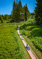 Deutschland, Bayern, Niederbayern, Naturpark Bayerischer Wald, Bodenmais: Hoehenluftkurort ind Wintersportort am Fuss des Arber, Sommerrodelbahn vom Silberberg | Germany, Bavaria, Lower-Bavaria, Nature Park Bavarian Forest, Bodenmais: popular holiday resort, summer bob from Silberberg mountain