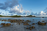 Toau Atoll, Tuamotu Archipelago, French Polynesia; hard corals exposed at low tide along the shoreline in late afternoon light