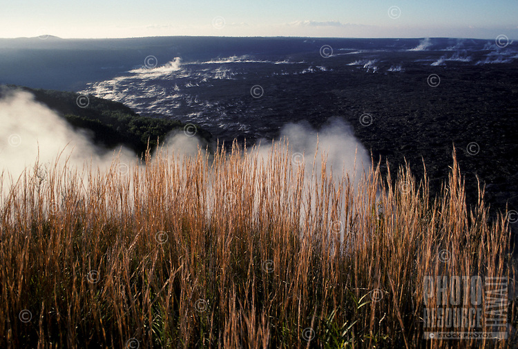 Scenic view near Kilauea Crater, Hawaii Volcanoes National Park, Big Island