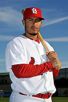 Mar 01, 2010; Jupiter, FL, USA; St. Louis Cardinals infielder Felipe Lopez (8) during  photoday at Roger Dean Stadium. Mandatory Credit: Tomasso De Rosa/ Four Seam Images