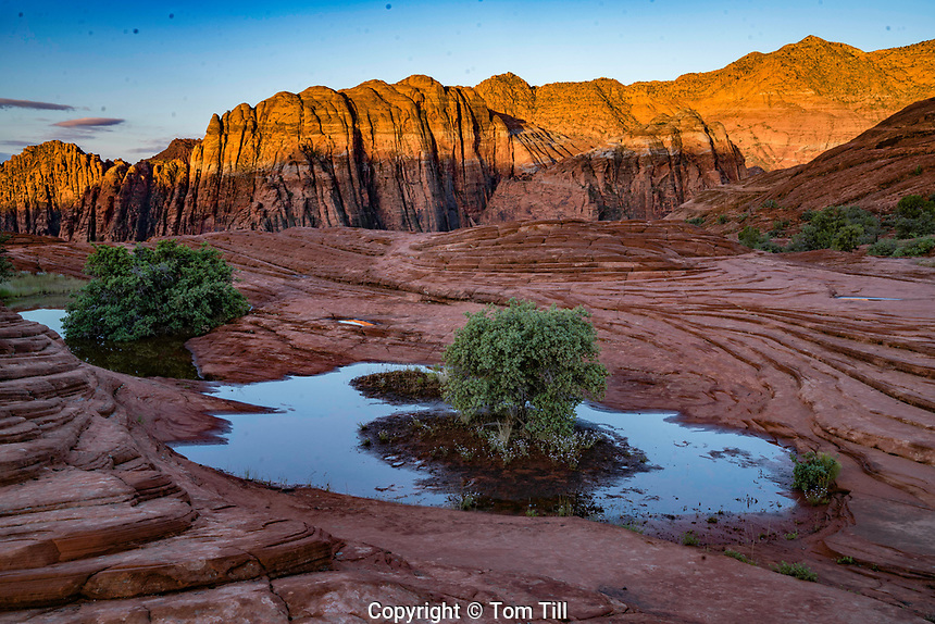 The Bonsai Pond, Snow Canyon State Park, Utah, Near St. George  Sunrise Pond from thunderstorms