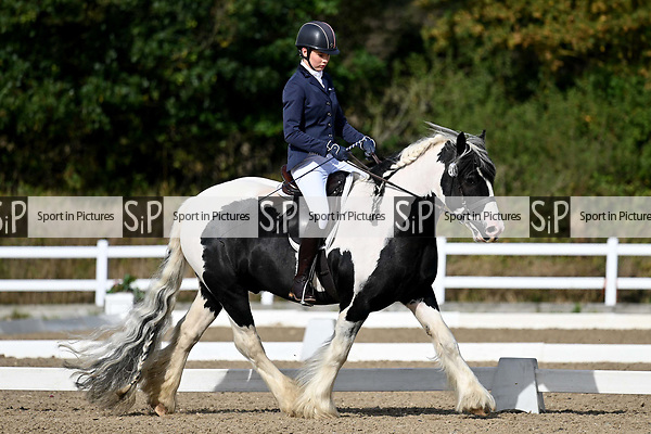 Stapleford Abbotts. United Kingdom. 05 October 2019. Class 3. Unaffiliated dressage championships. Brook Farm training centre. Essex. UK.~ 05/10/2019.  MANDATORY Credit Garry Bowden/SIPPA - NO UNAUTHORISED USE - 07837 394578