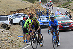 Esteban Chaves (COL) Mitchelton-Scott, Nairo Quintana (COL) Movistar, Rafal Majka (POL) Bora-Hansgrohe and Sepp Kuss (USA) Jumbo-Visma on the final Cat 1 climb up to Observatorio Astrofisico de Javalambre during Stage 5 of La Vuelta 2019 running 170.7km from L'Eliana to Observatorio Astrofisico de Javalambre, Spain. 28th August 2019.<br /> Picture: Eoin Clarke | Cyclefile<br /> <br /> All photos usage must carry mandatory copyright credit (© Cyclefile | Eoin Clarke)