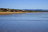 Sand dunes along Ninety Mile beach near Waipapakauri beach, Far North, Northland, New Zealand.