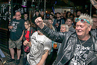 Brum Punx Picnic (Friday) 1st Sept 2017, The Liarbilitys, Angry Itch, WONK UNIT