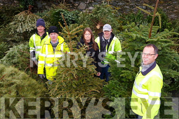Jerry McCarthy Killarney acting Town Manager is appealing for Christmas trees to be donated to them for recycling with l-r: Denis Doody, Simon Carmody, Peter Moynihan, Eileen O'Donoghue and Jerry McCarthy