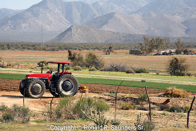 Tractor on Mexican ranch