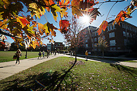 Students walking with fall leaves near Swalm<br />  (photo by Megan Bean / &copy; Mississippi State University)