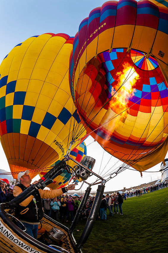Hot air balloons inflating before lifting off at the Albuquerque International Balloon Fiesta, Albuquerque, New Mexico USA.