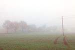 Europa, DEU, Deutschland, Nordrhein Westfalen, NRW, Rheinland, Niederrhein, Krefeld, Herbst, Agrarlandschaft, Nebel, Kategorien und Themen, Natur, Umwelt, Landschaft, Jahreszeiten, Stimmungen, Landschaftsfotografie, Landschaften, Landschaftsphoto, Landschaftsphotographie, Wetter, Wetterelemente, Wetterlage, Wetterkunde, Witterung, Witterungsbedingungen, Wettererscheinungen, Meteorologie, Wettervorhersage....[Fuer die Nutzung gelten die jeweils gueltigen Allgemeinen Liefer-und Geschaeftsbedingungen. Nutzung nur gegen Verwendungsmeldung und Nachweis. Download der AGB unter http://www.image-box.com oder werden auf Anfrage zugesendet. Freigabe ist vorher erforderlich. Jede Nutzung des Fotos ist honorarpflichtig gemaess derzeit gueltiger MFM Liste - Kontakt, Uwe Schmid-Fotografie, Duisburg, Tel. (+49).2065.677997, ..archiv@image-box.com, www.image-box.com]