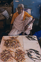 Asie/Inde/Maharashtra/Bombay : Sassoon Docks - Marché aux poissons