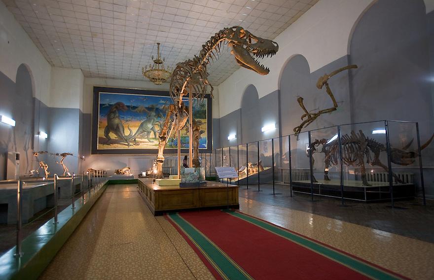 3 metre tall, 5 ton, flesh eating tarbosaurus skeleton. Museum of Natural History. Ulaan Baatar. Mongolia.