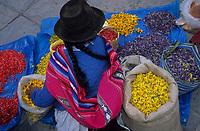Amérique/Amérique du Sud/Pérou/Cuzco : Plaza de Armas - Indienne vendant des fleurs pour la procession du tremblement de terre