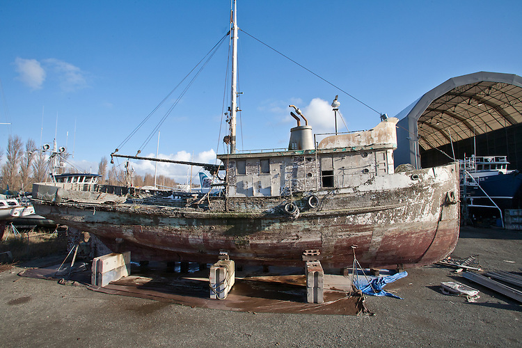 F/V Western Flyer, author, John Steinbeck, and Ed Ricketts chartered this purse seiner to explore the Gulf of California (Sea of Cortez) in 1940 resulting in the book: The Log of the Sea of Cortez. The fishing boat sank recently and has been hauled out at the Port of Port Townsend, Puget Sound, Washington State.