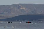 kayaking at Mono Lake in morning