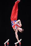 Gymnastics World Championships Mens Qualifications  25.10.15. Max Whitlock