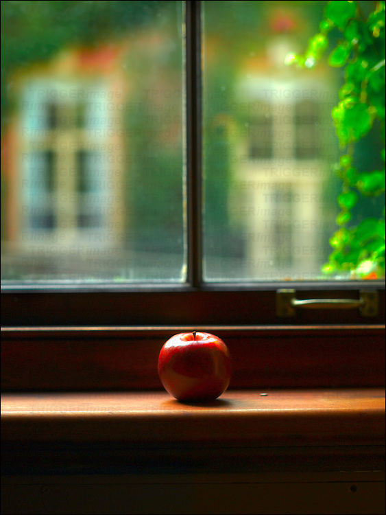 A red apple on a window ledge