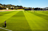 Burger King Super Smash Twenty20 cricket match between the Wellington Firebirds and Northern Knights at the Hawkins Basin Reserve in Wellington, New Zealand on Wednesday, 20 December 2017. Photo: Dave Lintott / lintottphoto.co.nz