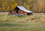 Oregon, Northeast, Enterprise, Lostine. An old barn and old canoe with autumn color.