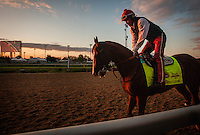 May 01, 2014: California Chrome prepares for the Kentucky Derby at Churchill Downs in Louisville Ky. Alex Evers/ESW/CSM