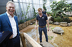 Foto: VidiPhoto<br /> <br /> RHENEN – De 31 Aldabra schildpadden van Ouwehands Dierenpark in Rhenen hebben een gloednieuw tropisch verblijf. Donderdag werd dat onder grote belangstelling geopend. Ouwehands heeft de grootste collectie reuzenschildpadden ter wereld.De Aldabra is de grootste landschildpad die er bestaat. Ze kunnen 170 kilo zwaar en 80 jaar oud worden. De oudste en bekendste schildpad van Ouwehands is Sjaak (41 jaar en ruim 100 kilo). Hij laat zich graag aaien door de verzorgers. In het verblijf is het constant 29 graden, met een hoge luchtvochtigheidsgraad. Aldabra schildpadden werden in de tijd van de VOC meegenomen als voedsel aan boord omdat ze bijna een jaar zonder voedsel en water kunnen. Foto: Dierentuineigenaar Marcel Boekhoorn.