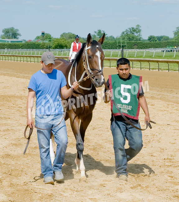 Tiz Miz Sue before The Obeah Stakes at Delaware Park on 6/16/12