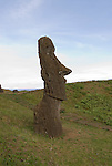 Chile, Easter Island: Sculptures at the quarry Rano Raraku where all the large sculptures were carved..Photo #: ch258-33833.Photo copyright Lee Foster www.fostertravel.com lee@fostertravel.com 510-549-2202
