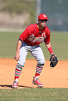 March 19, 2010:  Shortstop Jose Garcia of the St. Louis Cardinals organization during Spring Training at the Roger Dean Stadium Complex in Jupiter, FL.  Photo By Mike Janes/Four Seam Images
