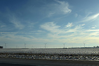 A windfarm is seen in Lafayette, Indiana on January 2, 2013.