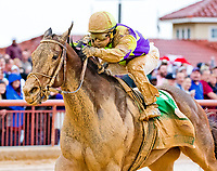 CHARLES TOWN, WV - APRIL 22: Imperative #5, ridden by Javier Castellano, wins the Charles Town Classic agaoin on Charles Town Classic Day at Charles Town Races and Slots on April 22, 2017 in Charles Town, West Virginia (Photo by Scott Serio/Eclipse Sportswire/Getty Images)