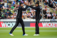 Mitch Santner congratulates Tim Southee (left) for catching Mohammad Hafeez during the One Day International cricket match between the NZ Black Caps and Pakistan at the Basin Reserve in Wellington, New Zealand on Saturday, 6 January 2018. Photo: Dave Lintott / lintottphoto.co.nz