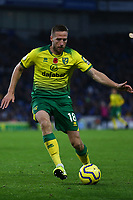 Marco Stiepermann of Norwich City during Brighton & Hove Albion vs Norwich City, Premier League Football at the American Express Community Stadium on 2nd November 2019