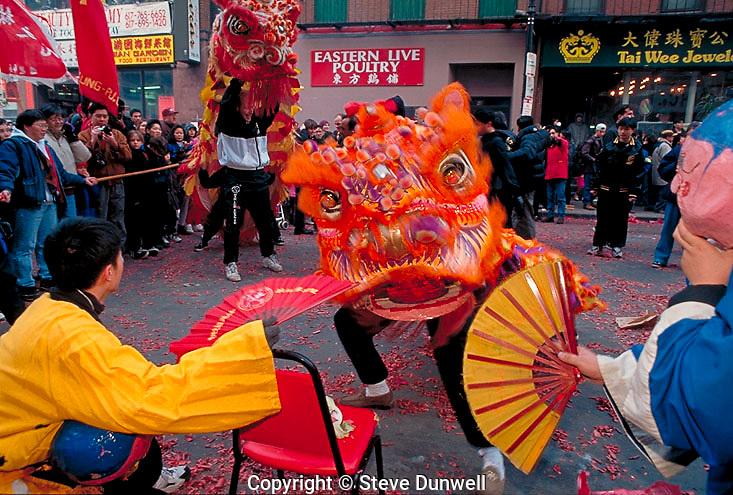 chinese New Year, Beach St., Chinatown, dragon, Boston, MA