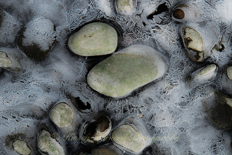 Ice crystals form around river rocks and pebbles creating another of Nature's extraordinary works of ice art.