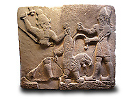 Picture & Image of  Neo-Hittite orthostat describing the legend of Gilgamesh from Karkamis,, Turkey. Ancora Archaeological Museum. To the left a bearded deity with a horned helmet is holding a lions back leg and is about to strike it with an axe. To the right a man is stabbing the lion with a dagger. 6
