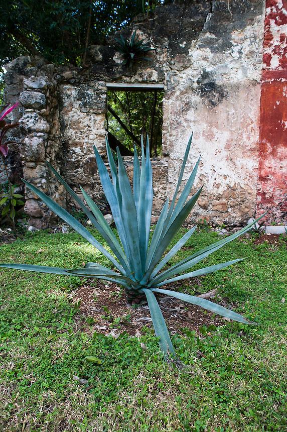 Hacienda, boutique hotel, Uayamon, Campeche, Mexico