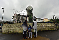Pictured: The Allosaurus dinosaur in the front garden of JerryAdams in Cwmbran, Wales, UK.<br /> Re: A 15ft tall Allosaurus has become a star attraction since it arrived at the front garden of a house in Cwmbran, south Wales, with hundreds of people already stopping to get a glimpse.<br /> It was auctioned off by Dan-yr-Ogof , The National Showcaves Centre for Wales for charity and Jerry Adams was the highest bidder with an offer of £1600.<br /> Motorists couldn't believe what they were seeing when they passed the dinosaur, complete with number plate on its tail, as it was towed on a trailer around 50 miles along the M4 from the Abercrave attraction on the outskirts of Swansea to its new home.<br /> Now people are contacting the showcaves on Facebook to find out exactly where it is so they can take their kids to see the creature, which measures 30ft in length.