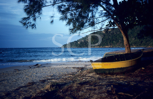 Buzios, Rio de Janeiro State, Brazil. Looking out to sea with a small yellow boat and an overhanging pine tree in the foreground.