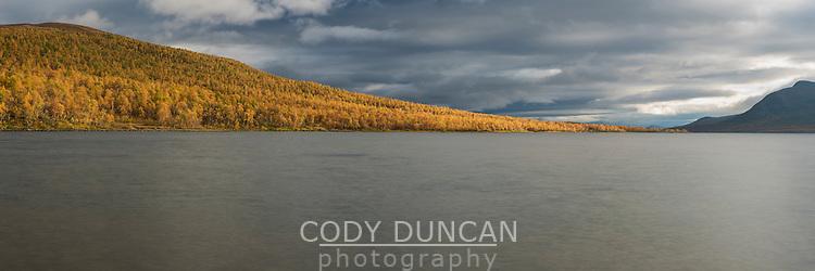 Colorful autumn landscape at lake Tärnasjön, Kungsleden trail, Lapland, Sweden