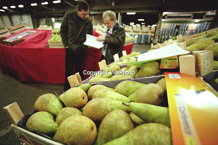 Foto: VidiPhoto..GELDERMALSEN - Handelaren keuren het fruit dat vrijdag en zaterdag wordt aangeboden op de nieuwjaarsveiling van fruitveiling Fruitmasters in .Geldermalsen. Alleen eersteklas fruit staat uitgestald. Fruitmasters maakte vrijdag bekend dat er vorig jaar een omzet van 207 miljoen kilo fruit werd gerealiseerd; 4 procent meer dan het jaar daarvoor. De omzet in geld liep echter fors terug: met 8 procent. Oorzaak is de bijzonder lage appelprijs, die uitkwam op een gemiddelde van ruim 52 cent per kilo. En dat is bijna 20 cent lager dan in 1998..