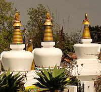 Stupas in a Buddhist monastery with the relics of Lamas, Sikkim, India