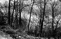 BOSNIA-HERZEGOVINA, Belgrade-Sarajevo Road, 03/2003..Lanscape pictures taken from the bus between Belgrad and Sarajevo. In Bosnia, our serbian bus drives only on the  roads of the Serbian Republic (Srpska republica). Between Zvornik and Drinjajca. .BOSNIE-HERZEGONVINE, Route Belgrade-Sarajevo, 03/2003..Photo prise depuis le bus qui relie Belgrade à Sarajevo. En Bosnie, notre bus serbe n'emprunte que des routes  de la République serbe (Srpska republica), faisant de nombreux détours pour éviter les enclaves musulmanes. Entre Zvornik et Drinjajca. .© Bruno Cogez / Est&Ost Photography