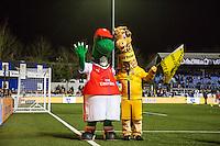 Sutton United  v Arsenal - FA Cup 5th rd - 20.02.2017