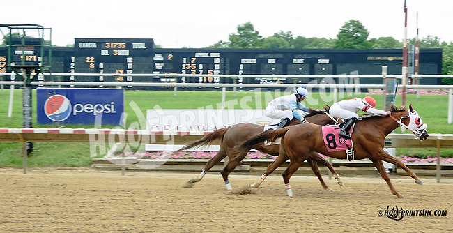 Jazz Age winning at Delaware Park racetrack on 6/26/14