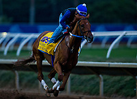 10-30-17 Breeders Cup Morning Workouts